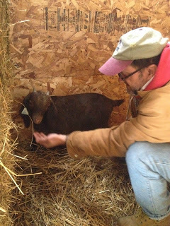 Dorothy Day Catholic Worker Farm welcomes its newest resident