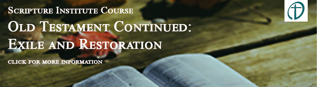 Click here for more information on the Scripture Institute Course