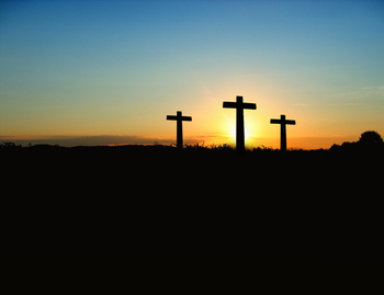 Holy Week - Easter Schedule - Ave Maria Parish