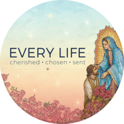 USCCB 9 Days for Life Novena
