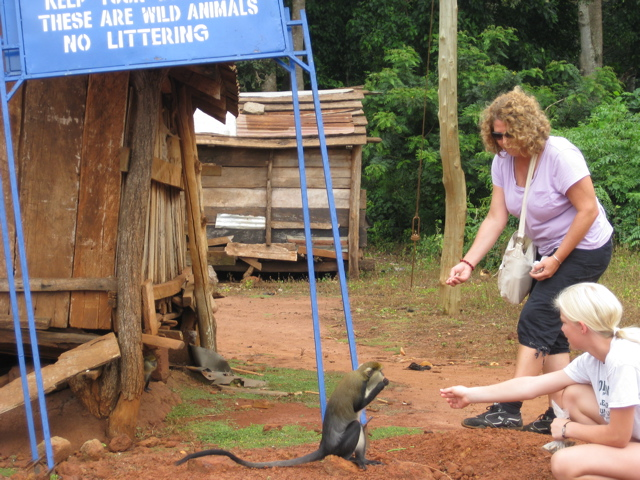 Janet Leach feeding monkey at Monkey Sanctuary in Ghana.
