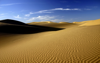 "A Lenten Reflection: ""In the Desert"""