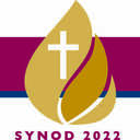 Your feedback needed in a Synod Small Group