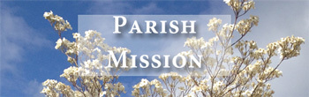 Parish Mission at St. Mary's Los Gatos with Fr. Tom Allender, sj