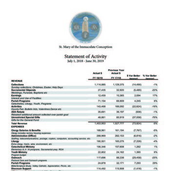 2018-19 Financial Report Available