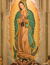 Our Lady of Guadalupe Plenary Indulgence
