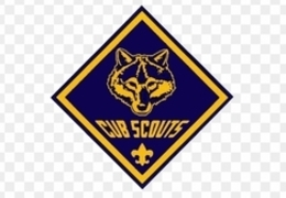 Cub Scout Roundup