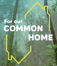 For Our Common Home - Development and Peace Workshop (KINGSTON)