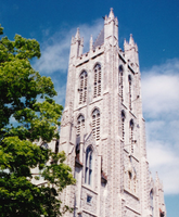 St.Mary's Cathedral, Kingston