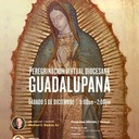 Diocesan Pilgrimage of our Lady of Guadalupe/Peregrinación virtual Diocesana