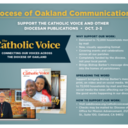 Update for Pastors and Parochial Administrators re Communications Collections