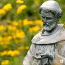 Feast Day of St. Francis