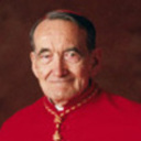 Rights of Accused Priests: Toward a revision of the Dallas charter and the 'Essential Norms'
