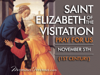 Saint of the Day - Saint Elizabeth of the Visitation