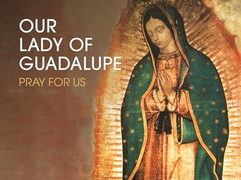 Saint of the Day - Our Lady of Guadalupe