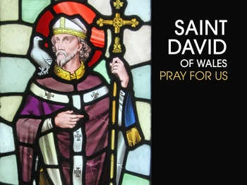 Saint of the Day - Saint David of Wales