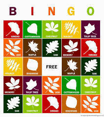 Time for Autumn Festival Bingo!