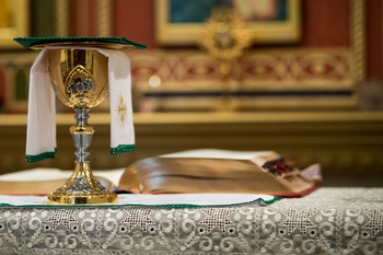 Order of the Mass Review (FROM THE ALTAR SERVERS PERSPECTIVE)