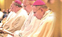 Report from the U.S. bishops' November meeting