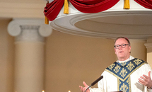 Bishop Barron: 'Shadow boxing' around moral issues