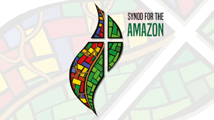 Catholic News Service (CNS) videos on the Amazon series