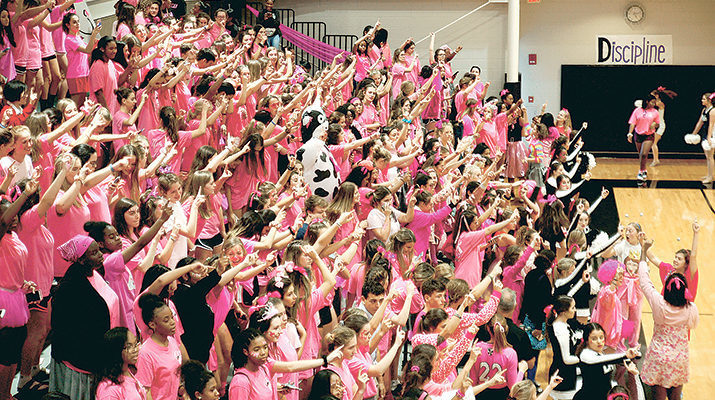 Dominican has pink volleyball games for Tulane Cancer Center