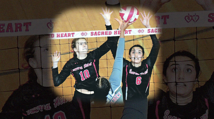 Volleyball's best continue to dominate the courts