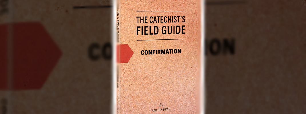 Confirmation catechists should 'accompany' students