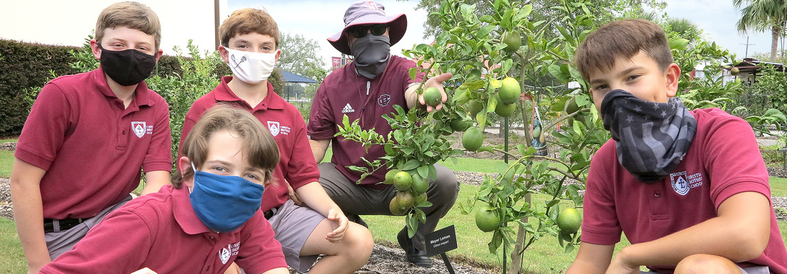 Christian Brothers' City Park garden cultivates green thumbs