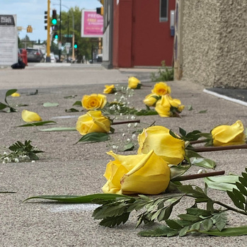 Yellow roses remind us we can all do something