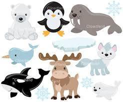 Arctic Animal Project due on or before