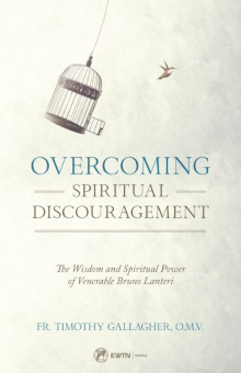 Overcoming Spiritual Discouragement by Fr. Timothy Gallagher, O.M.V.