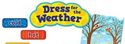 Do you want to help the Puppy dress for the weather?
