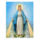 Feast of the Immaculate Conception- School is Open