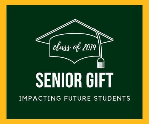 "illustration of graduation cap with ""Class of 2019"" inside and the words ""Senior Gift: Impacting Future Students"""
