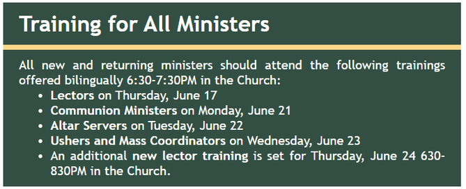 Training for all Ministers