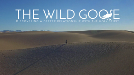The wild goose: discovering a deeper relationship with the Holy Spirit