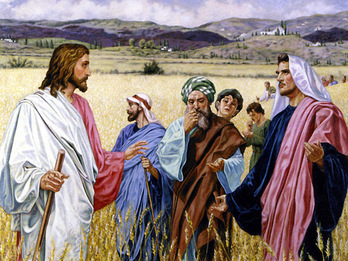 31st Week in Ordinary Time: They Preach But They Do Not Practice- How to be Authentic
