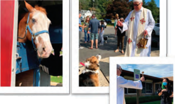 BLESSING OF THE ANIMALS (10/3)
