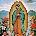 LCCS's Patron Saint Our Lady of Guadalupe Novena Begins