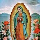 Novena to Our Lady of Guadalupe Begins