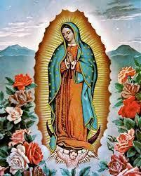 Begin Novena to Our Lady of Guadalupe