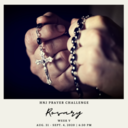 HNJ Prayer Challenge Week V: Daily Rosary