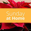 Sunday at Home | December 27
