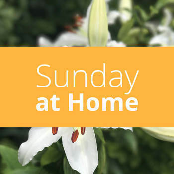 Sunday at Home | May 3