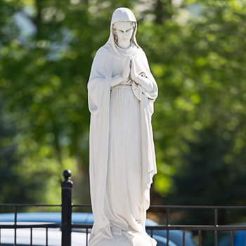 Divine Mercy Services to be Held