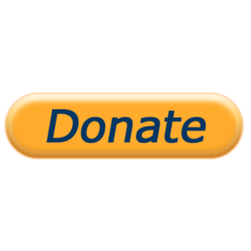 Donate-Payment Now