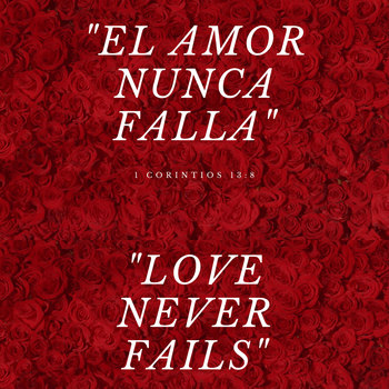 Night of Love | Noche de Amor