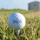 Golfers medal at State Tournament