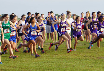 Cross Country Continues Run of Excellent Performances